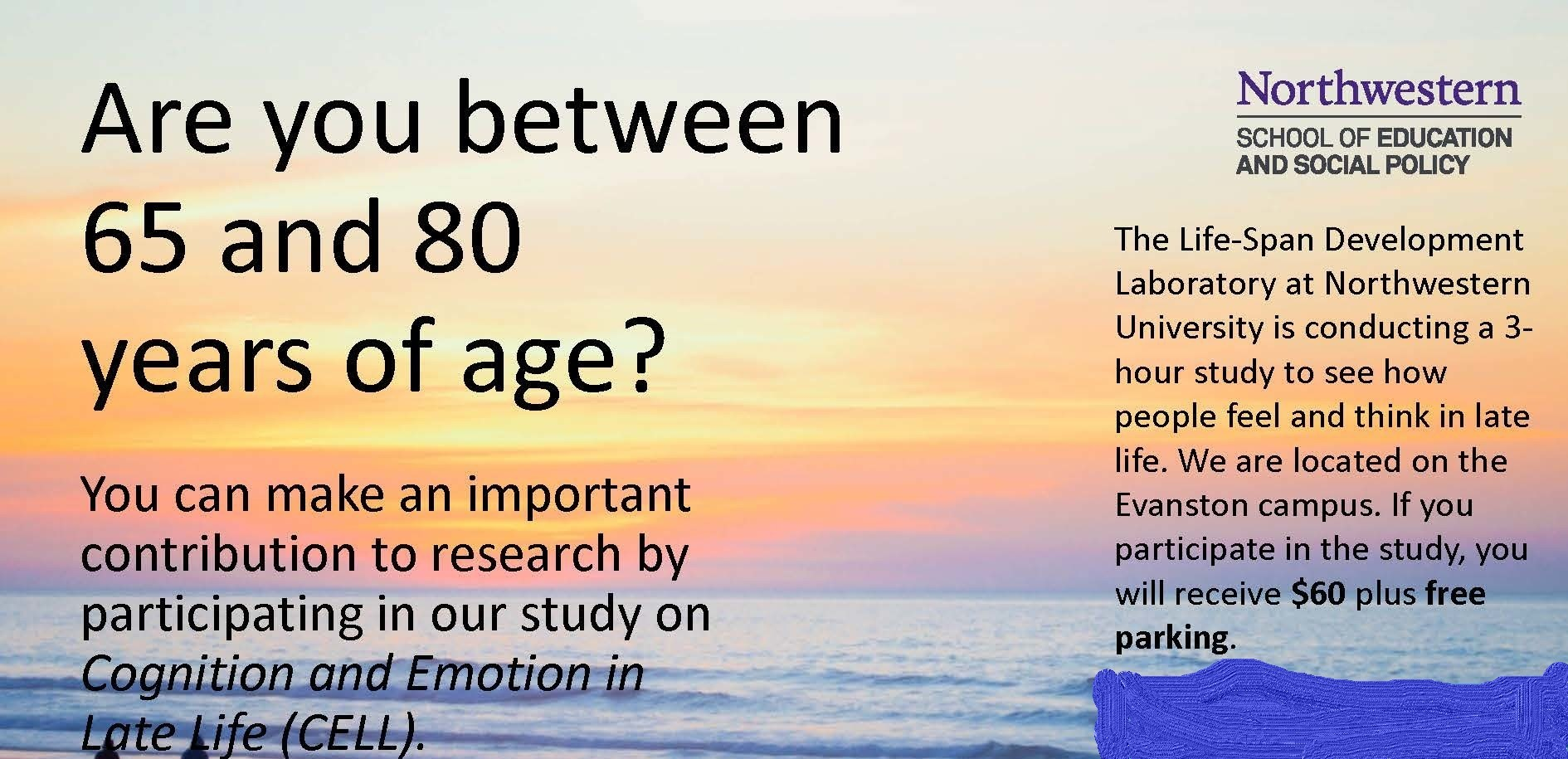 Cognition and Emotion Late in Life